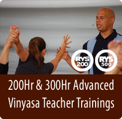 200hr and 300hr Vinyasa Teacher Trainings